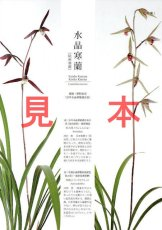 画像5: にっぽんの伝統園芸vol.4(別冊趣味の山野草)/栃の葉書房  (5)