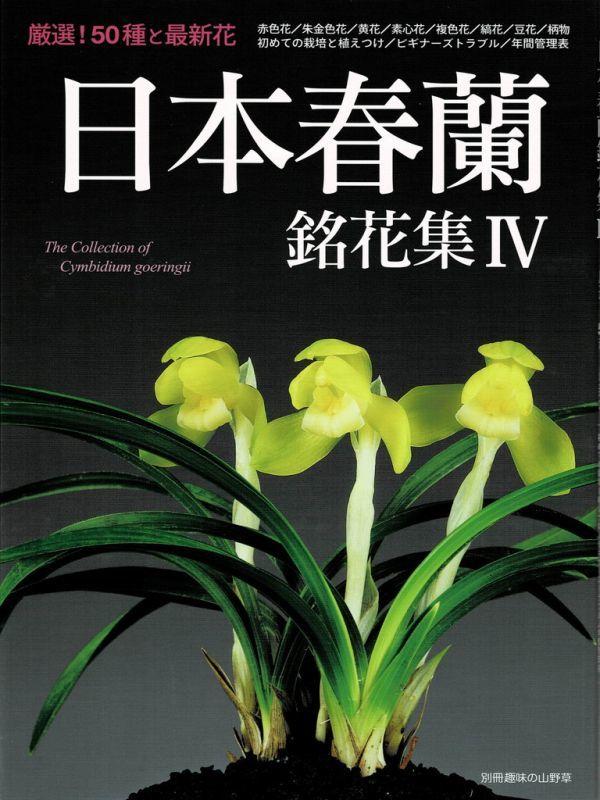 画像1: 日本春蘭銘花集IV(別冊趣味の山野草)/栃の葉書房 (1)